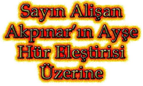 Sayın Alişan Akpınar'ın Ayşe Hür Eleştirisi Üzerine