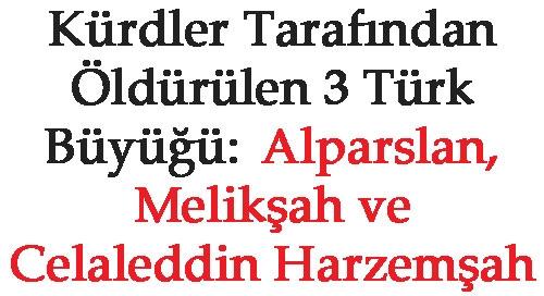 MELİKŞAH, ALPARSLAN VE CELALEDDİN HARZEMŞAH KÜRDLER TARFINDAN ÖLDÜRÜLDÜLER!!!!!
