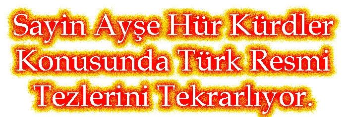Sayin Ayşe Hür Kürdler Konusunda Türk Resmi Tezlerini Tekrarlıyor.