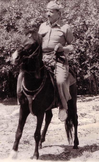 dr. Qasimlo